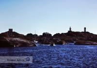 Kosterhavets nationalpark är den första i Sverige under havsytan och här finns Sveriges enda korallrev. Kosterhavets nationalpark är en av landets största.